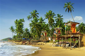 Glimpses of Goa